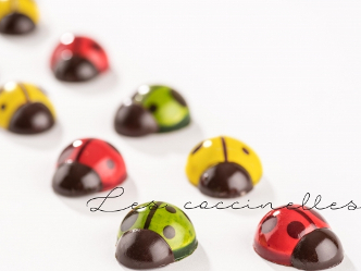 ファブリス・ジロット|キュートなショコラ「てんとう虫」と「プティ・フルール」